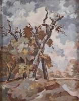 Stare drzewa na Kępie Bazarowej